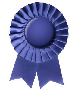 Cigna insurance awards