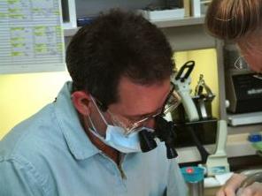 Bupa dental expansion