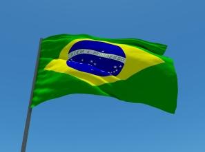 Healthcare investors in Brazil
