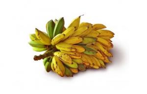 Bananas are a good source of potassium.