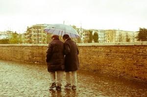 Alzheimer's bilingual link